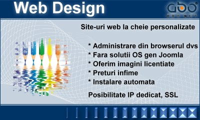 Web Design BUSINESS Domenii inregistrare .info